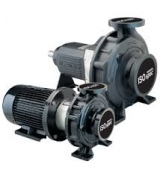 <h5>Davey End Suction pumps</h5><p></p>