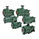 <h5>Caprari Multi-Stage End Suction Pumps</h5>