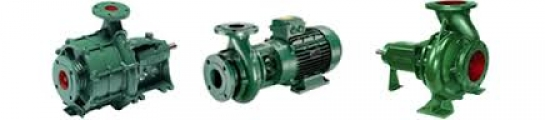 <h5>Caprari End Suction Pumps</h5>