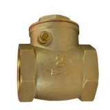 <h5>Brass Swing Check Valve</h5>
